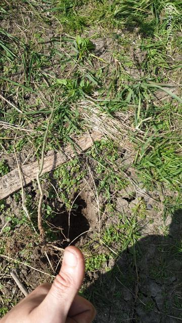Hole Photo